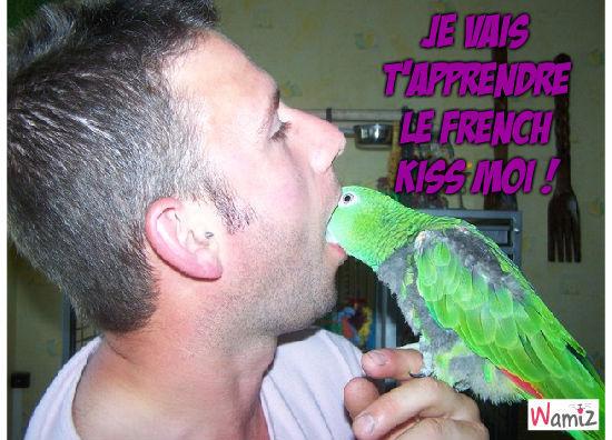 French Kiss Coco, lolcats réalisé sur Wamiz