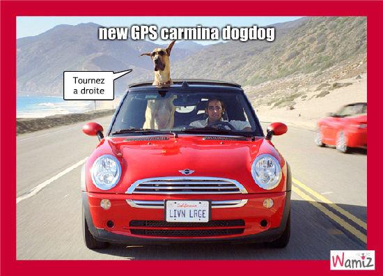 Carmina dogdog, lolcats réalisé sur Wamiz