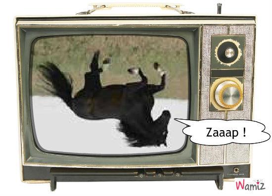 Zap, lolcats réalisé sur Wamiz