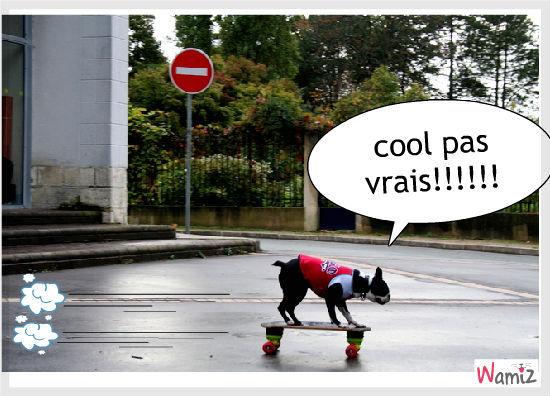 ètre cool!!!!!!, lolcats réalisé sur Wamiz