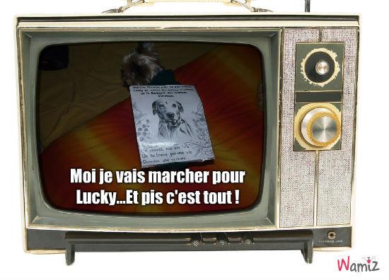 Murphy marche pour Lucky !, lolcats réalisé sur Wamiz