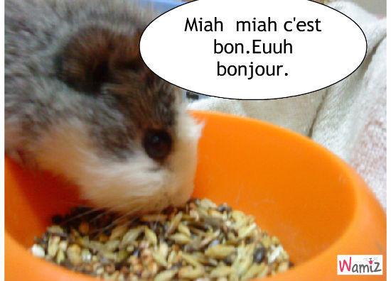 Je mange!!!!!!!!!!!!!!!, lolcats réalisé sur Wamiz