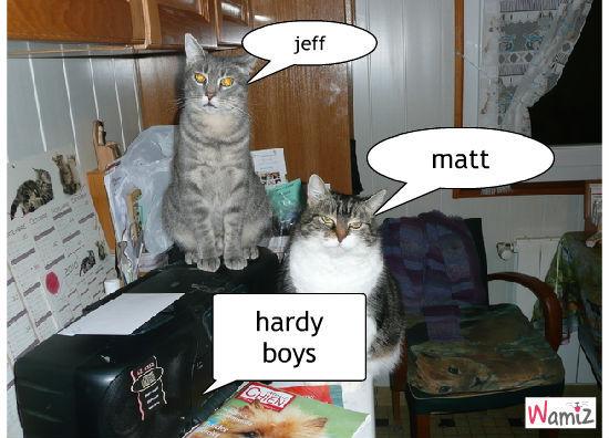 jeff and matt, lolcats réalisé sur Wamiz
