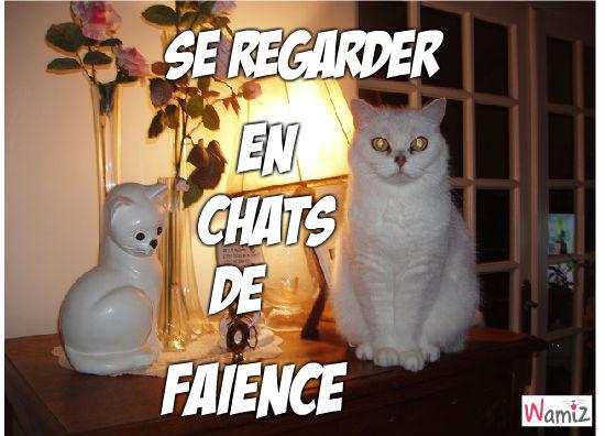 En chats de Faïence, lolcats réalisé sur Wamiz