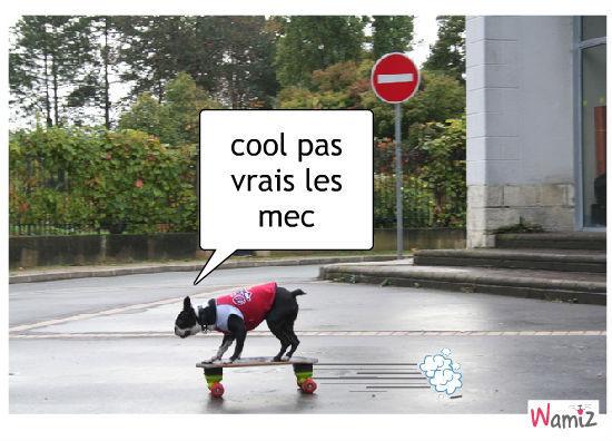 etre cool!!!!, lolcats réalisé sur Wamiz
