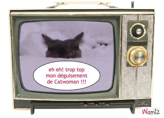 Catwoman, lolcats réalisé sur Wamiz