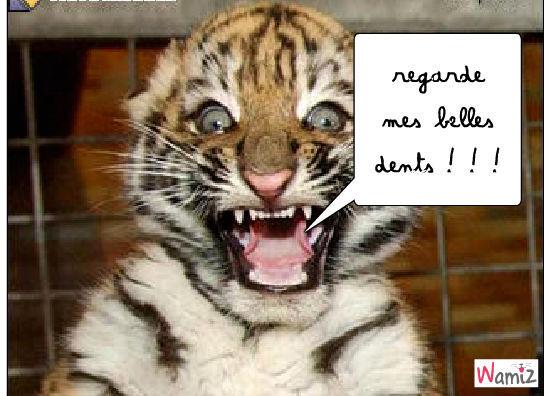 le tigre qui montre c'est dents, lolcats réalisé sur Wamiz