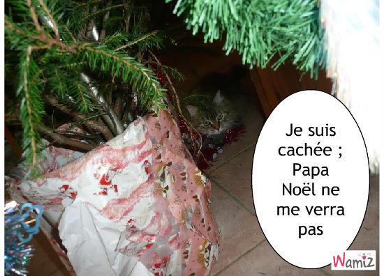 Le père chat Noël, lolcats réalisé sur Wamiz