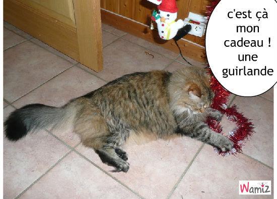 Le cadeau du Chat Noël, lolcats réalisé sur Wamiz