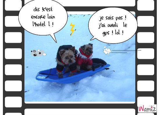 les vacances à la neige, lolcats réalisé sur Wamiz