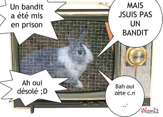 Un bandit en prison xD, lolcats réalisé sur Wamiz