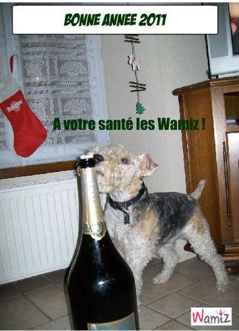 Voeux 2011, lolcats réalisé sur Wamiz
