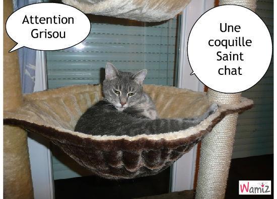 La coquille saint chat, lolcats réalisé sur Wamiz