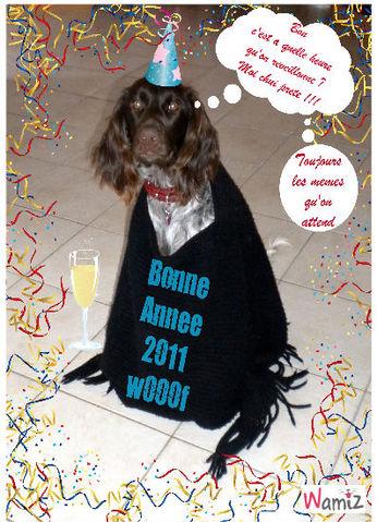 Bonne Année 2011, lolcats réalisé sur Wamiz
