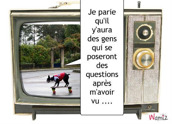Un skate, lolcats réalisé sur Wamiz