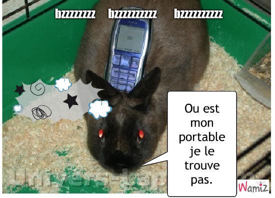 le lapin qui cherche son portable, lolcats réalisé sur Wamiz