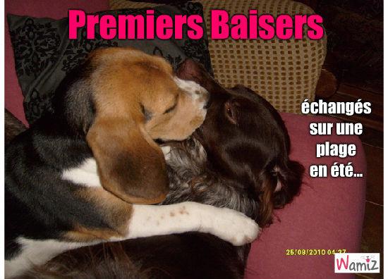 Premiers Baisers, lolcats réalisé sur Wamiz
