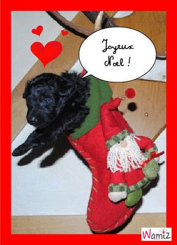Le meilleur des Noël, lolcats réalisé sur Wamiz