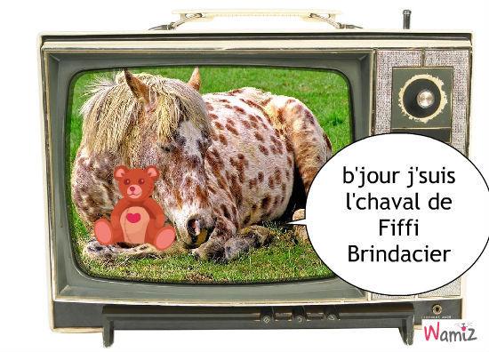 Fiffi Brindacier, lolcats réalisé sur Wamiz