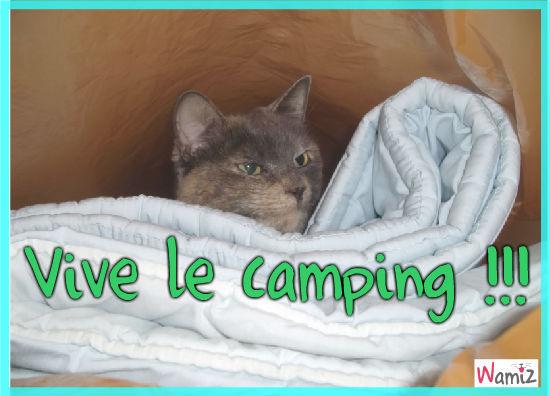 camping, lolcats réalisé sur Wamiz