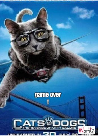 game over !, lolcats réalisé sur Wamiz