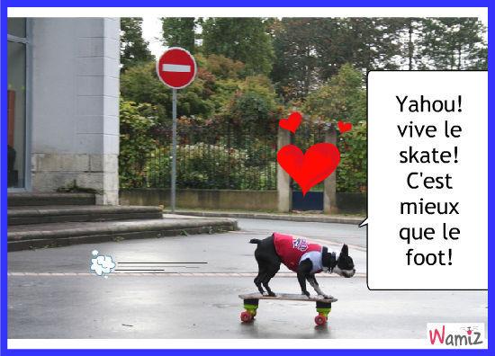 Le chien au skateboard, lolcats réalisé sur Wamiz