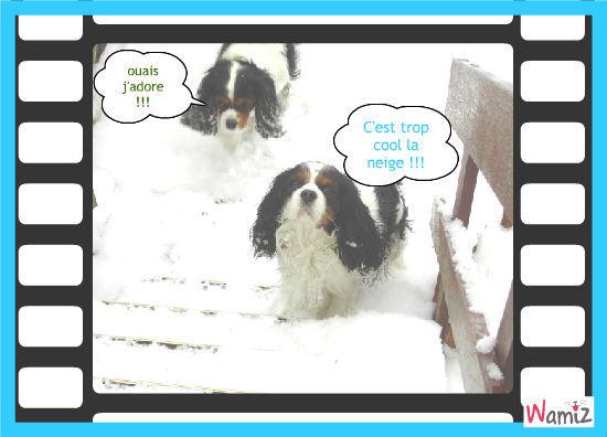 la neige,façon cavalier !!!, lolcats réalisé sur Wamiz