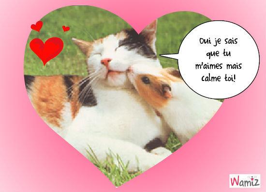 un amour !, lolcats réalisé sur Wamiz