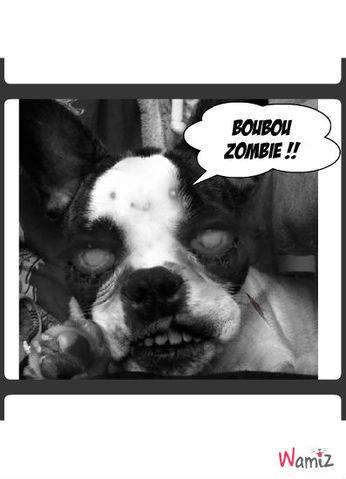 Boubou Zombie , lolcats réalisé sur Wamiz