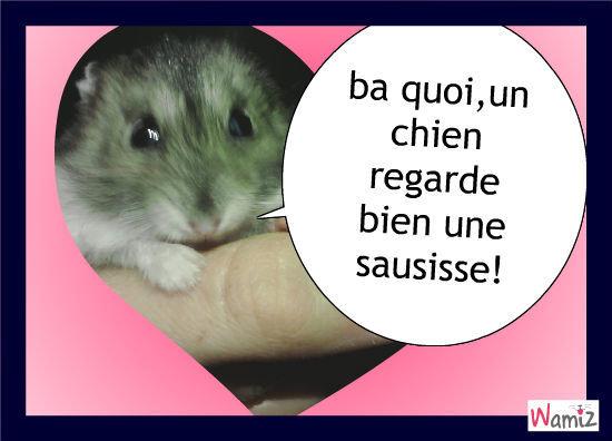 mon hamster adore, lolcats réalisé sur Wamiz