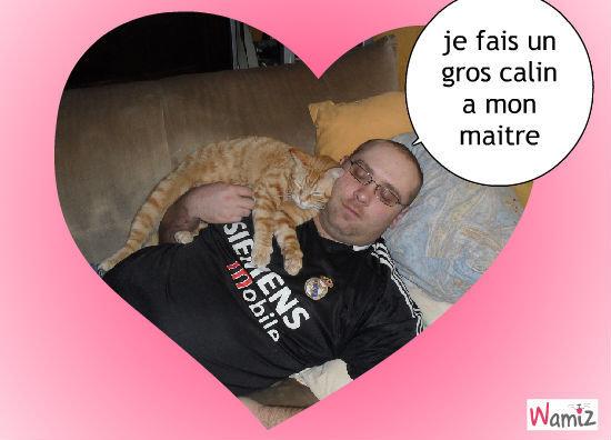 mon homme et mon chat, lolcats réalisé sur Wamiz