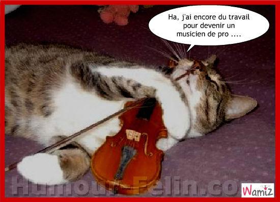 le violon, lolcats réalisé sur Wamiz