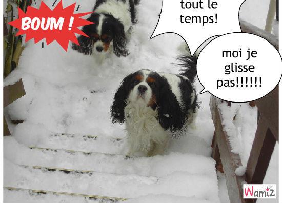 dans la neige, lolcats réalisé sur Wamiz