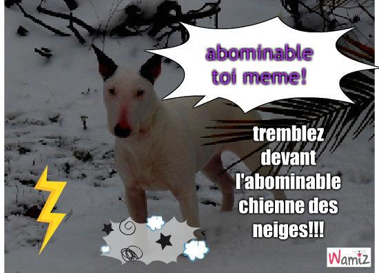l'abominable chienne de neiges, lolcats réalisé sur Wamiz