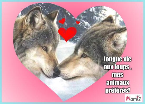 loups amoureux, lolcats réalisé sur Wamiz