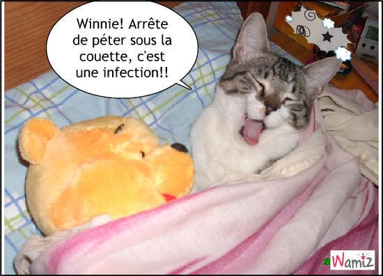 Winnie pète sous la couette ^^, lolcats réalisé sur Wamiz