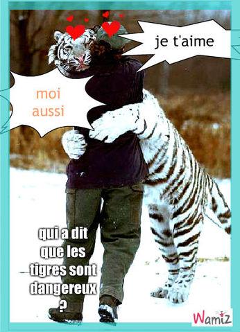 tigre, lolcats réalisé sur Wamiz