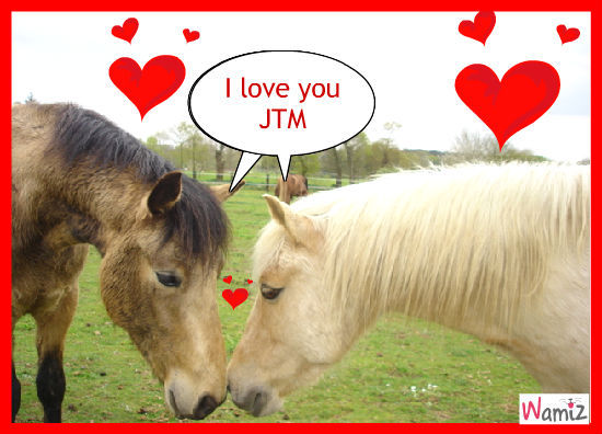 pony pony love love, lolcats réalisé sur Wamiz