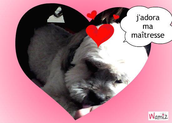 l'amour d'un chien , lolcats réalisé sur Wamiz