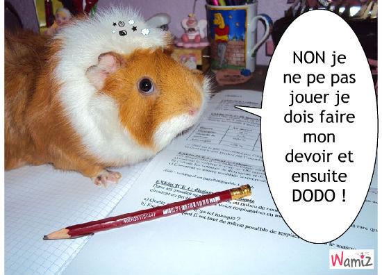 Top Drole et mignon : tooniz, bande dessinée (BD) et photo  TL59