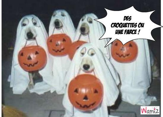 Halloween Canin, lolcats réalisé sur Wamiz