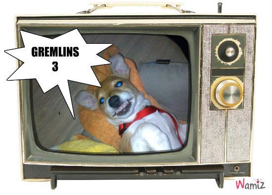 gremlins 3, lolcats réalisé sur Wamiz