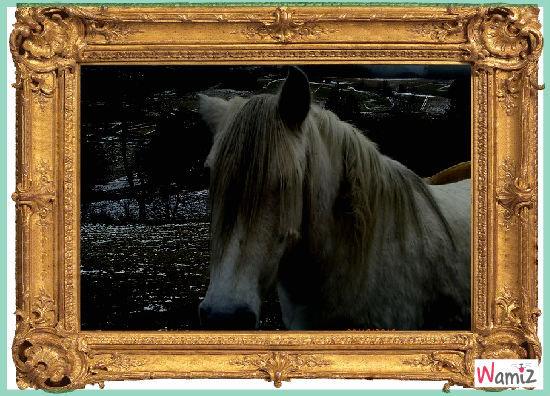 poney , lolcats réalisé sur Wamiz
