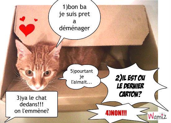 Tooniz de rita bande dessin e bd et photo for Adaptation chat nouvelle maison