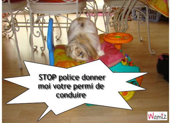 police, lolcats réalisé sur Wamiz