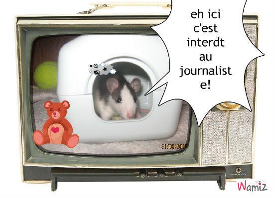 maison hamster, lolcats réalisé sur Wamiz