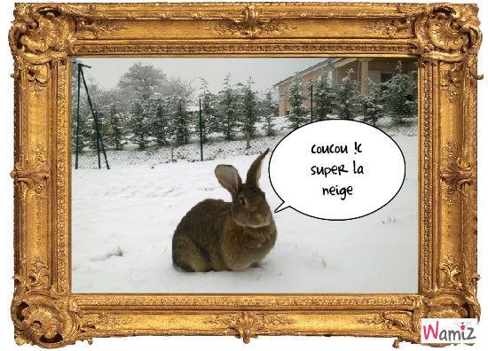 un lapin a la neige, lolcats réalisé sur Wamiz