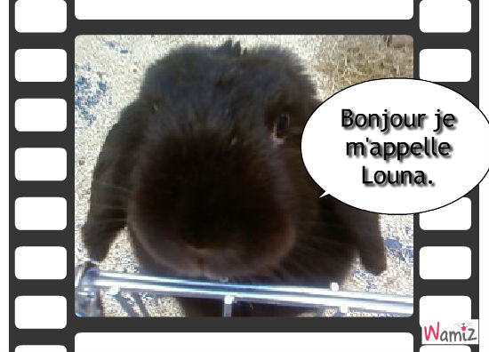 Louna, lolcats réalisé sur Wamiz