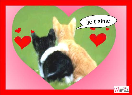 l amour des  animaux, lolcats réalisé sur Wamiz