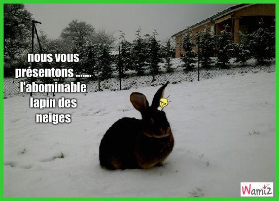 la lapin des neiges, lolcats réalisé sur Wamiz